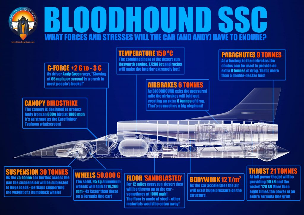 bloodhound ssc infographic 03